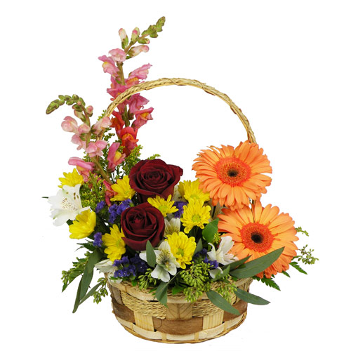 A Wylie Flower Shop exclusive. With the arrival of spring, there is no time like the present to celebrate. This delightful arrangement is full of springs vibrant blossoms.<br/><br/>